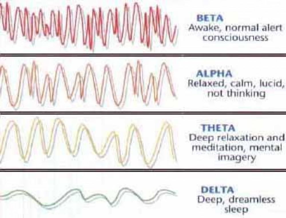 NHS AP Physics C